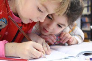 School consultants for existing schools